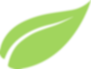 Copy of Organic-BGLeaf-GREEN.png