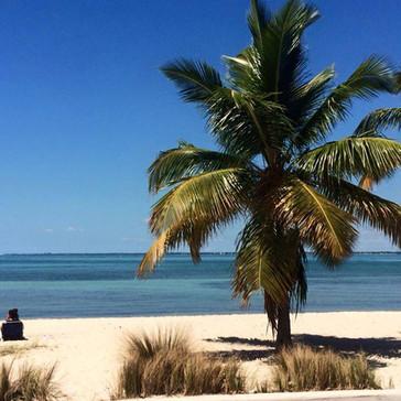 The Miami Tri Club Beach