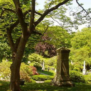 Mount Auburn Cemetery – Board of Directors