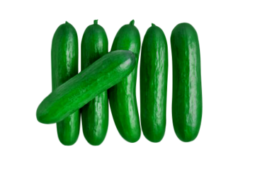 organic Mini Seedless Cucumber