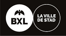 logo-Vbxl.jpg