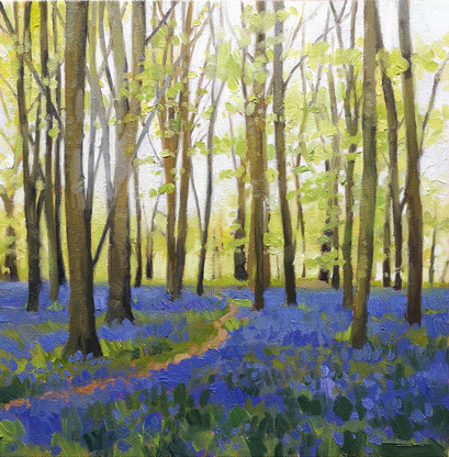 Bluebell woods at Badbury Clump, Wiltshire.