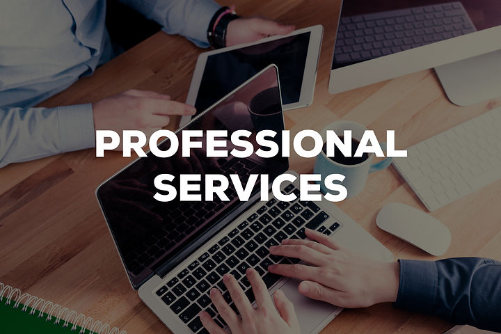 PROFESSIONAL SERVICES CONCEPT.jpg