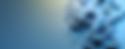 Screen Shot 2020-03-23 at 10.23.30 AM.pn