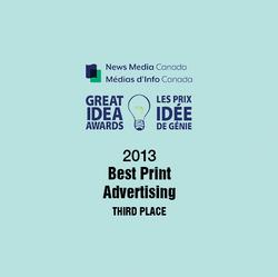 2013 Great Idea Award