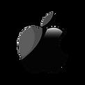 Apple%20Logo%20Black_edited.png