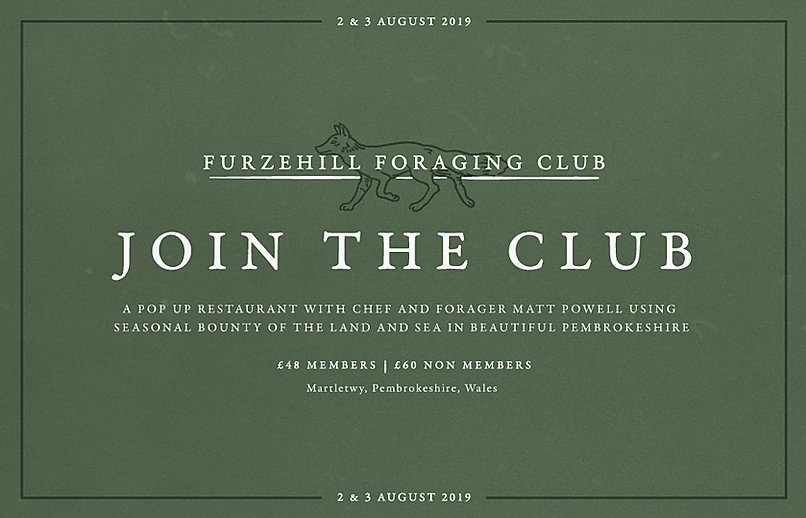 furze-hill-foraging-club.jpg