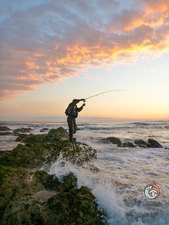 A Bass Fishing Adventure?
