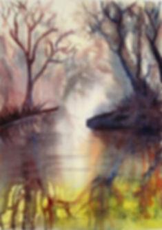 Sutter Bypass reflections sold.jpg