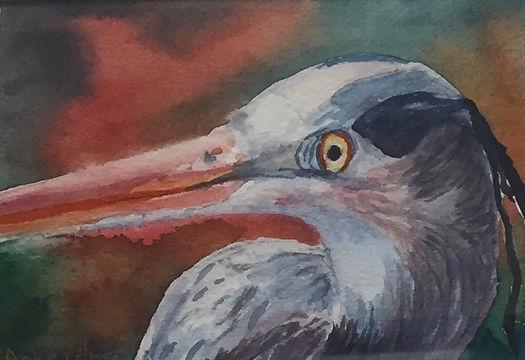 Blue Heron, Watercolor $175.00_edited.jp