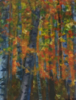 Aspen Forest, Watermedia on Geso Paper,