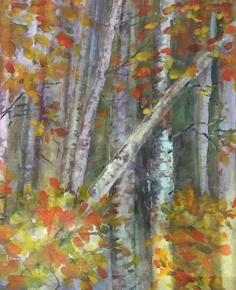 Lassrn Park Aspens, Watercolor $400.00_e