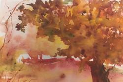 Autumn Glenn, Watercolor $.._edited