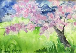 Almond Study VIII, Watercolor $50