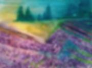 Lavender field light.jpg