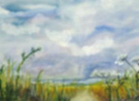 Queen Anns Path watercolor 18x17 framed