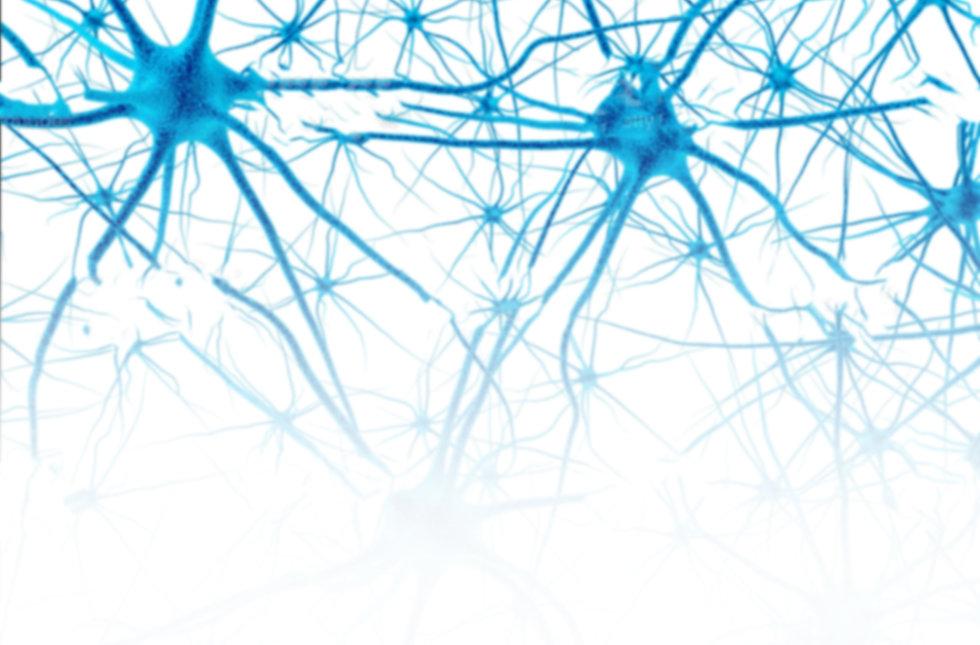 neuron placeholder V1.jpg
