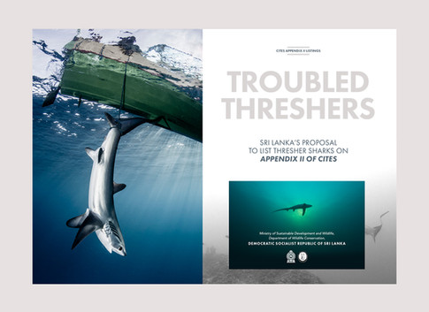 Troubled Threshers