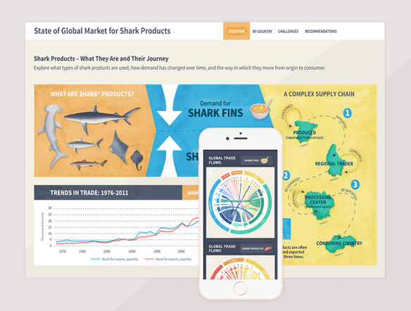 State of the Market for Shark & Ray Products