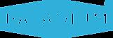 PALADIUM logo max голубой.png