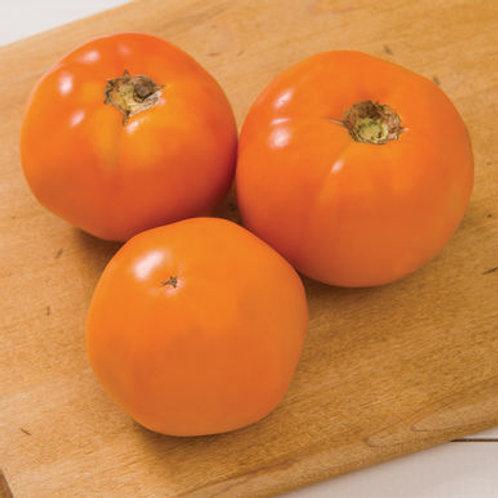 Chef's Choice Orange