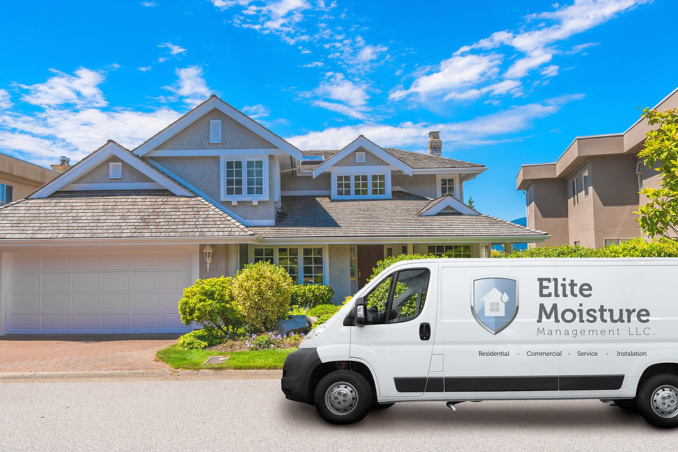 Elite moisture Van.jpg