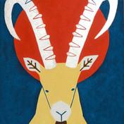 Distance Ibex