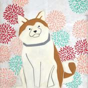 Dog,dahlia
