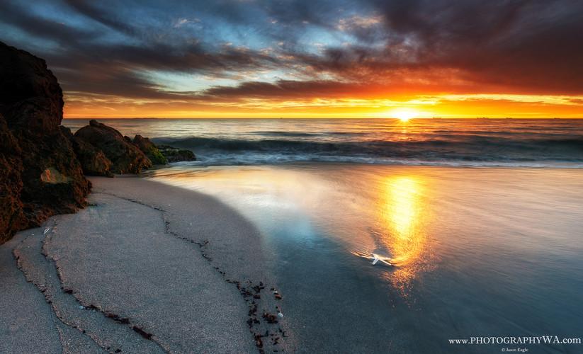CYOConnor Golden Sunset