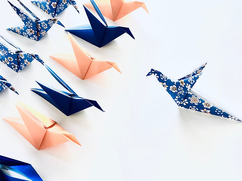 Origami Blue Jay ::: 15 pieces