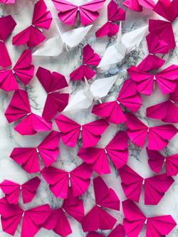 Origami Butterflies & Origami Cranes