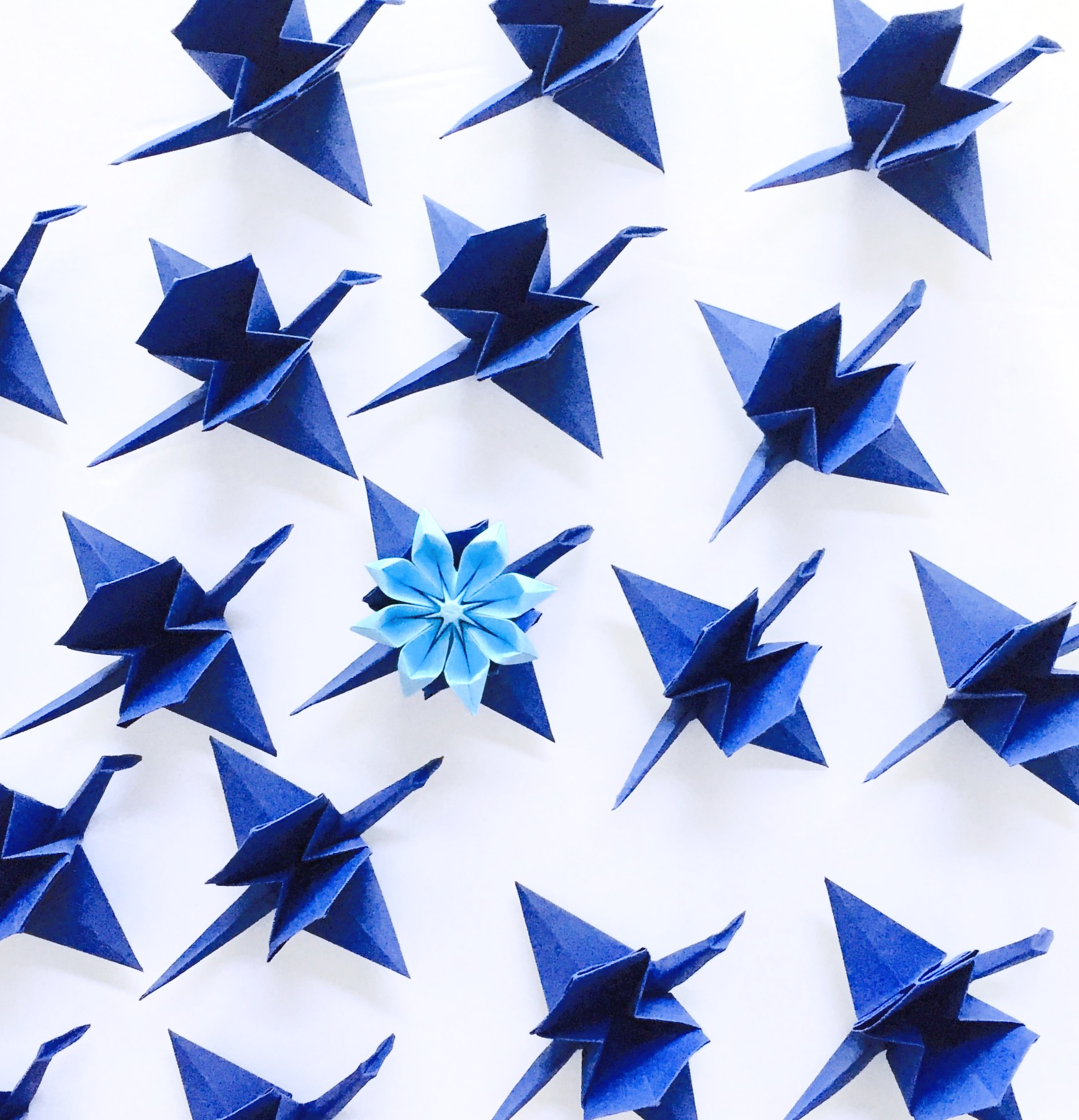 Origami Carriage Cranes + Origami Daisy