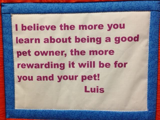 Be a good pet owner