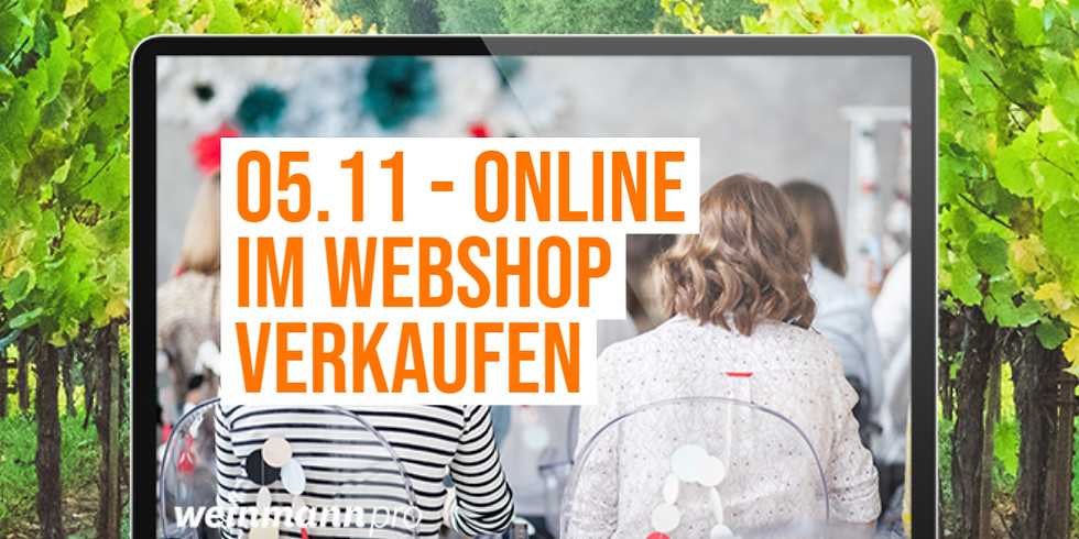 13:00 Uhr - 14:00 Uhr Webinar Eigener Webshop (kostenlos)