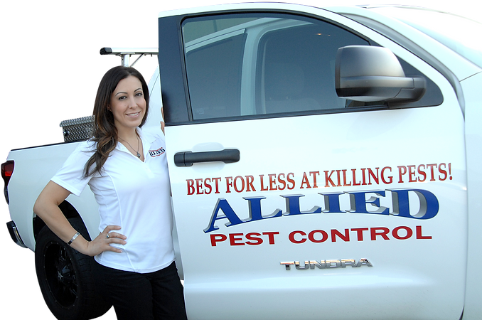 Nancy Maestas Allied Pest Control Contact Us