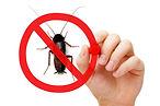 Corona Pest Control Coupons Discounts