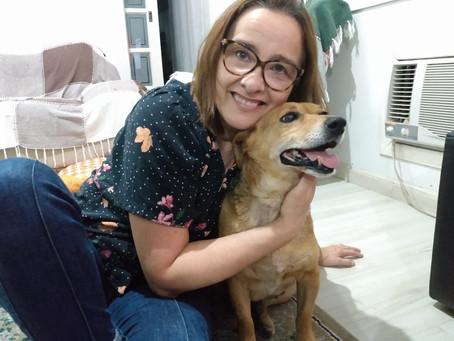 Cadela Belinha é adotada e passa a residir em Pelotas