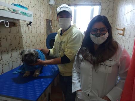 Clínica veterinária Prontovet agora conta com banho e tosa