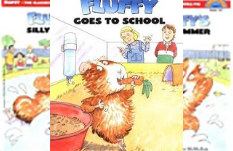 Fluffy the Classroom Guinea Pig