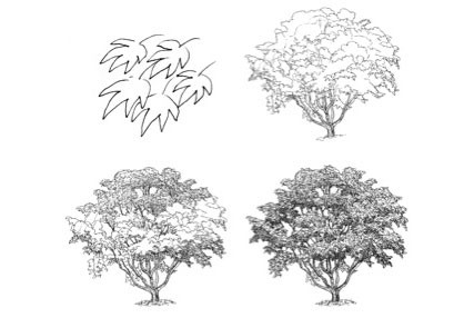 James McMullan | New York Times | Mother Nature Decoded