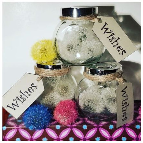 Wishes In A Jar - The Mombot