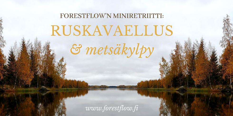 Miniretriitti: Ruskavaellus & Metsäkylpy