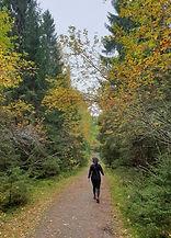 luonto, metsä, ihminen, yksilöohjaus, syksy