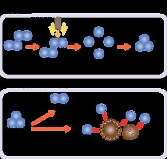 オゾンによる除菌の仕組み
