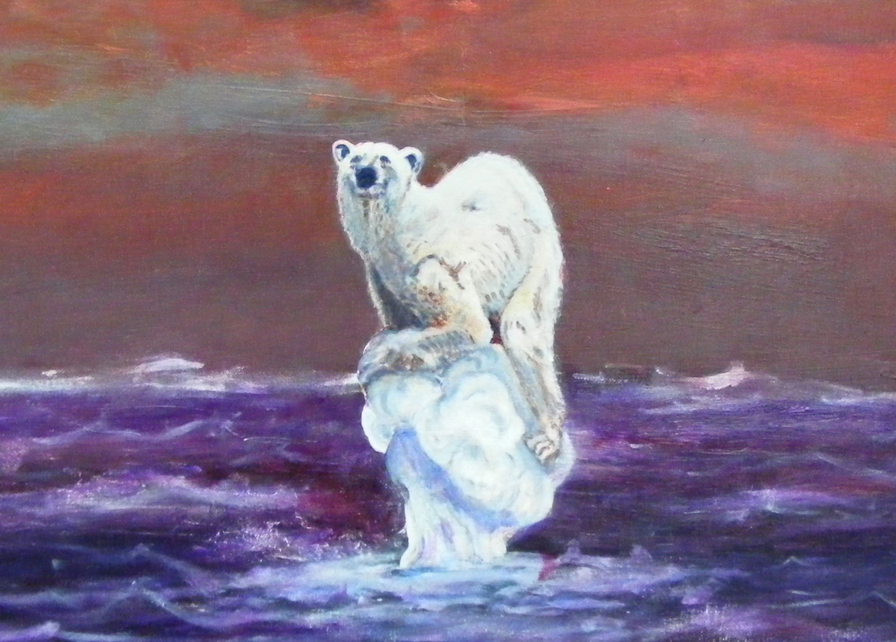 Last Voyage of the polar bear