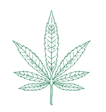 green leaf-01.png