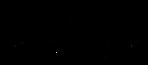 A&J_Logo_Dec9-01-BRIDE.png
