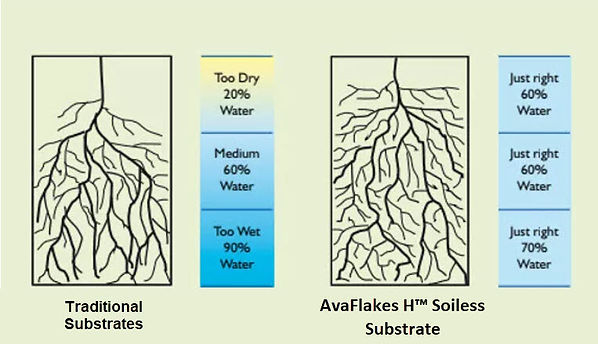 AVAFlakes-H-comparison-substrate-jpg.jpg