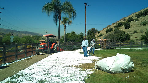 AVAFlakes-soil-amendment-application-2-jpg.jpg