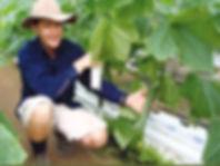Avaflakes-hydroponic-growing-medium-pete